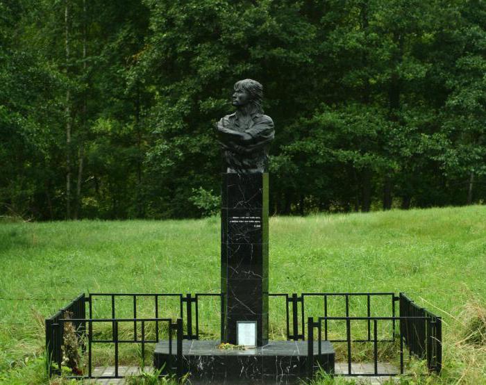 Рис. 5 Мемориал Виктору Цою в Латвии